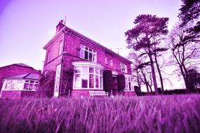 Make May Purple - Stroke Awareness Month
